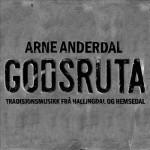 Arne Anderdal: Godsruta