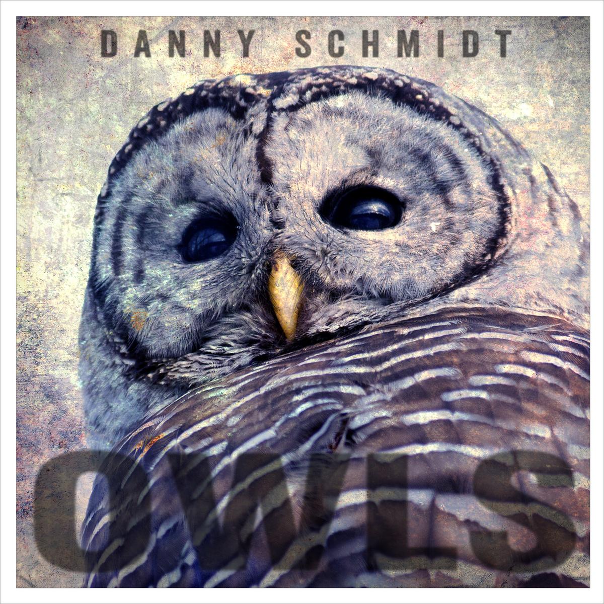 Danny Schmidt: Owls