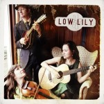 Low Lily's Low Lily
